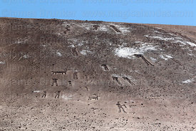 Detail of geoglyphs in the Lluta Valley, Region XV, Chile