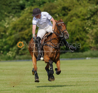 Polo Photography photos