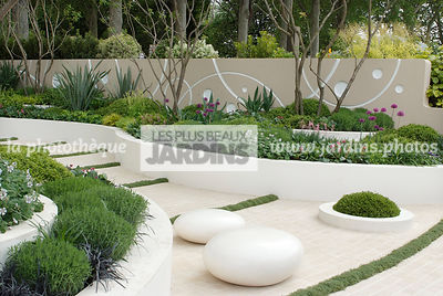 Jardin contemporain, Jardin design. Jardin contemporain, Jardin design. Massif surélevé : Allium hollandicum 'Purple Sensatio...