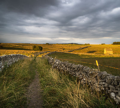 Summer evening footpath around Wardlow Mires
