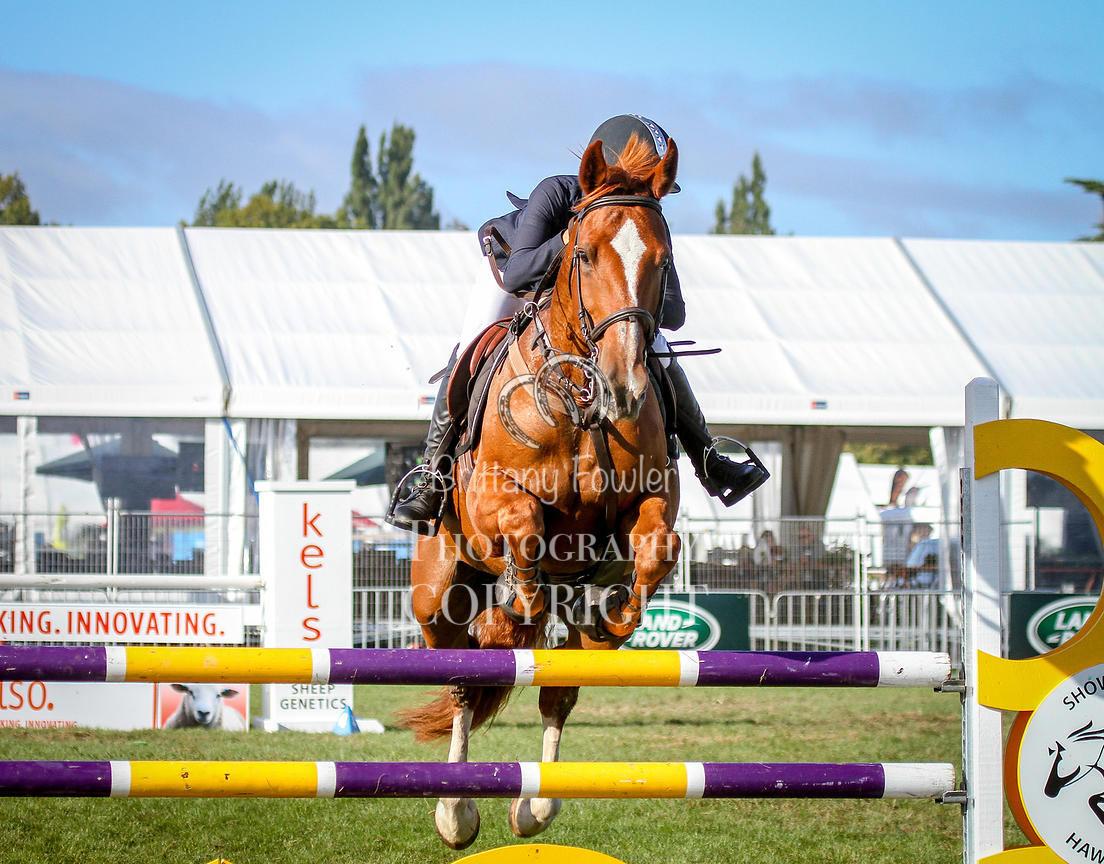 Brittany Fowler Photography   CE ARENA 1, HORSE 1 25CM A2