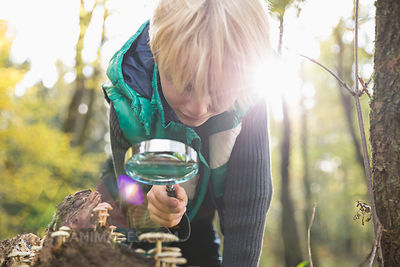 Little boy watching mushrooms with magnifying glass in a forest