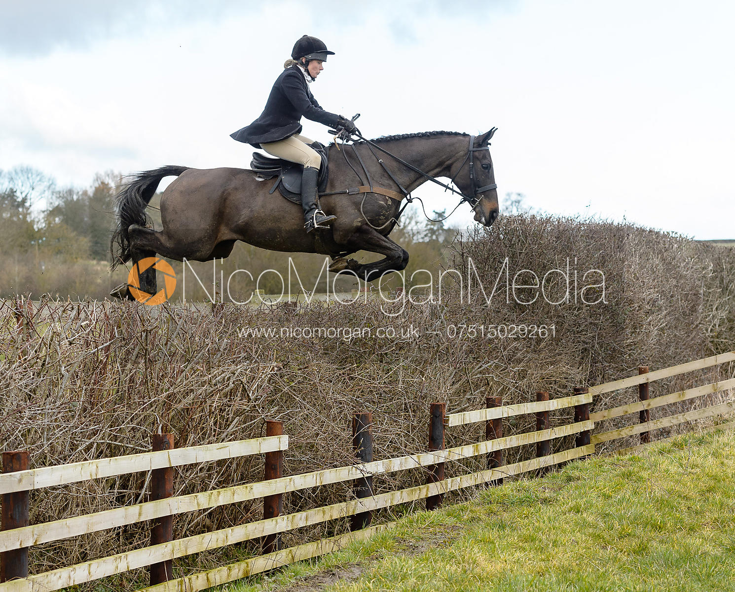 HB jumping a fence at Burrough House