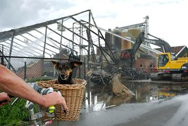 Hond in fietsenmand bij brand kippenstal | Dog in bicycle basket at barn fire