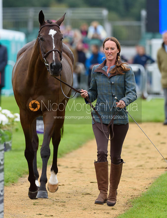 Andrea Baxter and INDY 500 at the trot up, Land Rover Burghley Horse Trials 2017