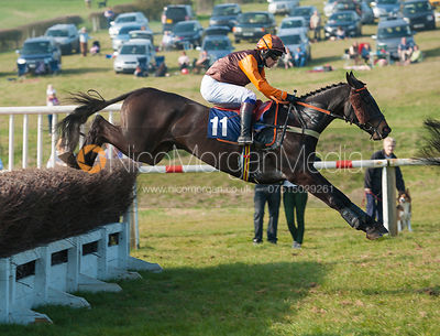 Rumbavu (Sam Waley-Cohen) - Belvoir Hunt Point to Point 24/3/12