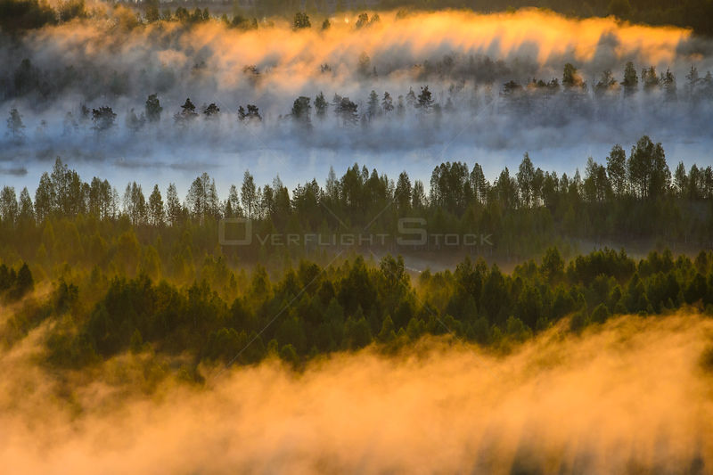 Aerial view at  sunrise of fog over  bog forest,  Tartumaa, Estonia, May 2013.