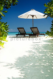 An image of two empty sun loungers and a parasol on a tropical beach in the Maldives.