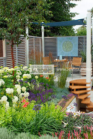 Border, Border with flowers, garden designer, Pergola, Small garden, Stair, Terrace, tight cloth, Trellis, Urban garden, Cont...