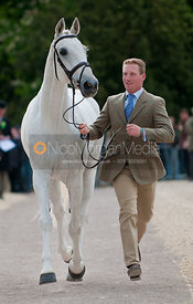 Oliver Townend and Flint Curtis, Badminton Horse Trials 2009