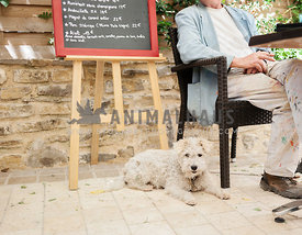 Artist smoking a cigarette sitting in a French cafe with his pet dog