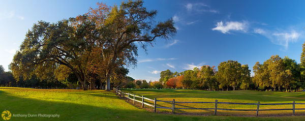 Panorama of William Land Park in the Fall #2