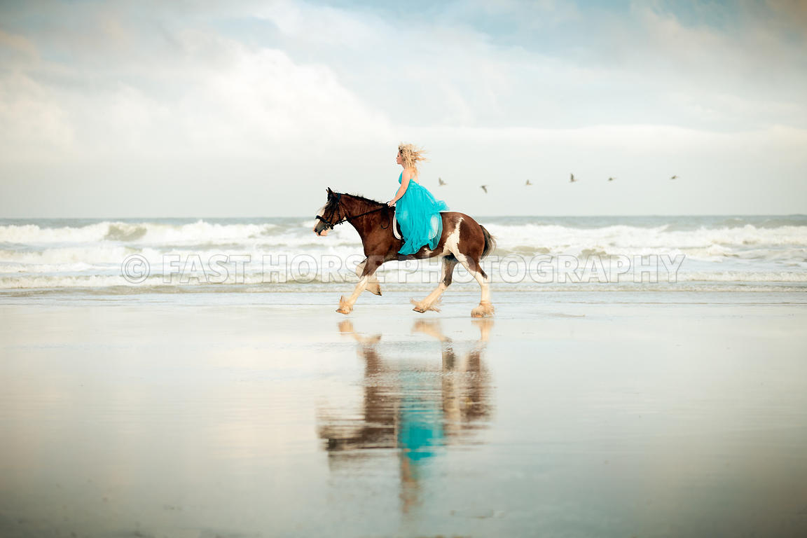 Fast Horse Photography Riding Horses On The Beach