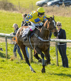 Kara Gregory (VIEW THE DANCE) - Race 5 Restricted - The Belvoir Point-to-point 2017