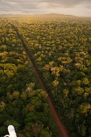 Aerial view of road running through rainforest, Iwokrama Reserve, Guyana, December 2009
