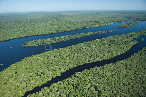 "Aerial view of ""Várzea"" flooded Amazon Rainforest on the banks of the Guaporé / Itenez River, Western Rondônia State and East..."