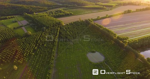 Aerial countryside green landscape on sunset with marshy fields, 4K Italy