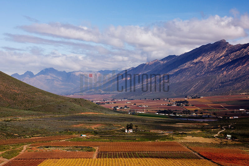 Hex River Valley Wine Country in the Autumn