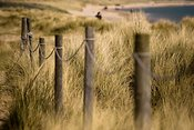 Posts and rope on path through sand dunes