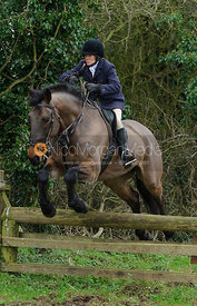 Alice Robb jumping a hunt jump near Knossington Spinney