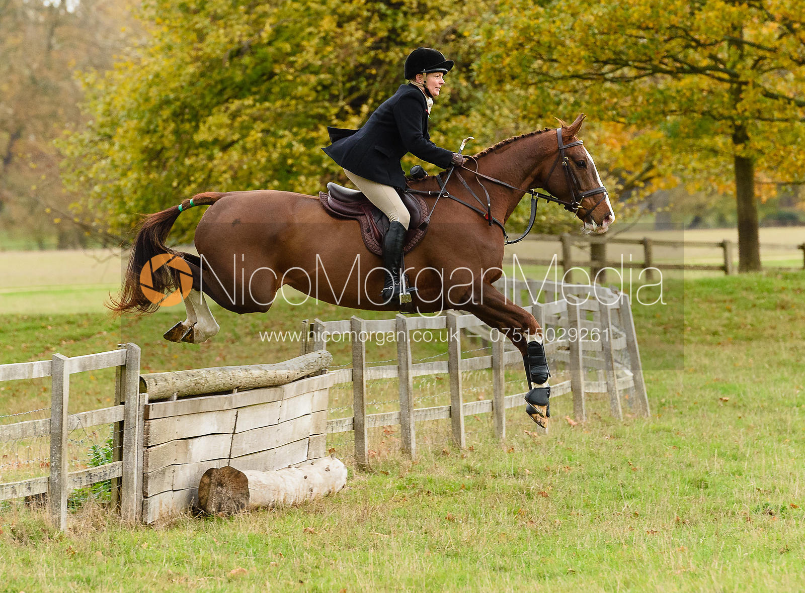 Margo Sly jumping a hunt jump near Temple Hill.
