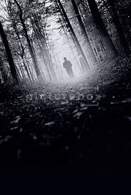 An atmospheric image of a mystery man in a hat, from behind, walking through a forest.