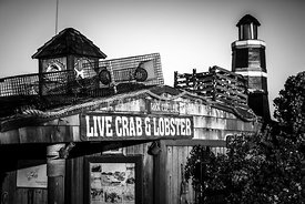 Dory Fishing Fleet Live Crab and Lobster Sign Picture