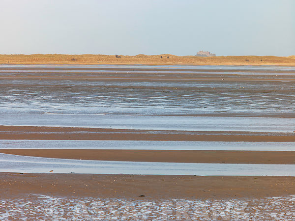Low Tide, Budle Bay, Northumberland Coast