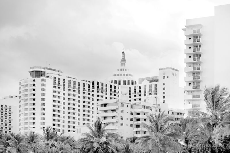 MIAMI BEACH FLORIDA BLACK AND WHITE