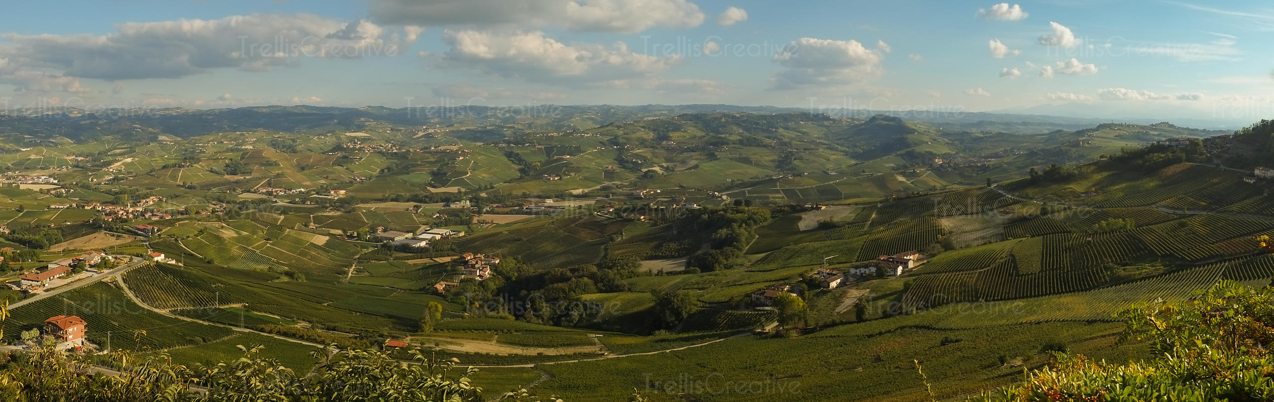 View of the Piedmont Region countryside from the town of La Morra, Italy