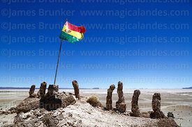 Bolivian flag and fossilised tubes of algae and sediments on shore of Salar de Uyuni at Aguaquiza, Nor Lipez Province, Potosí...