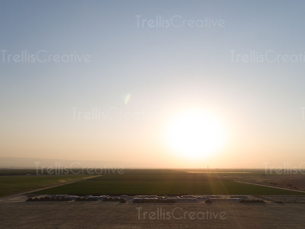 Aerial photo of green fields at sunrise