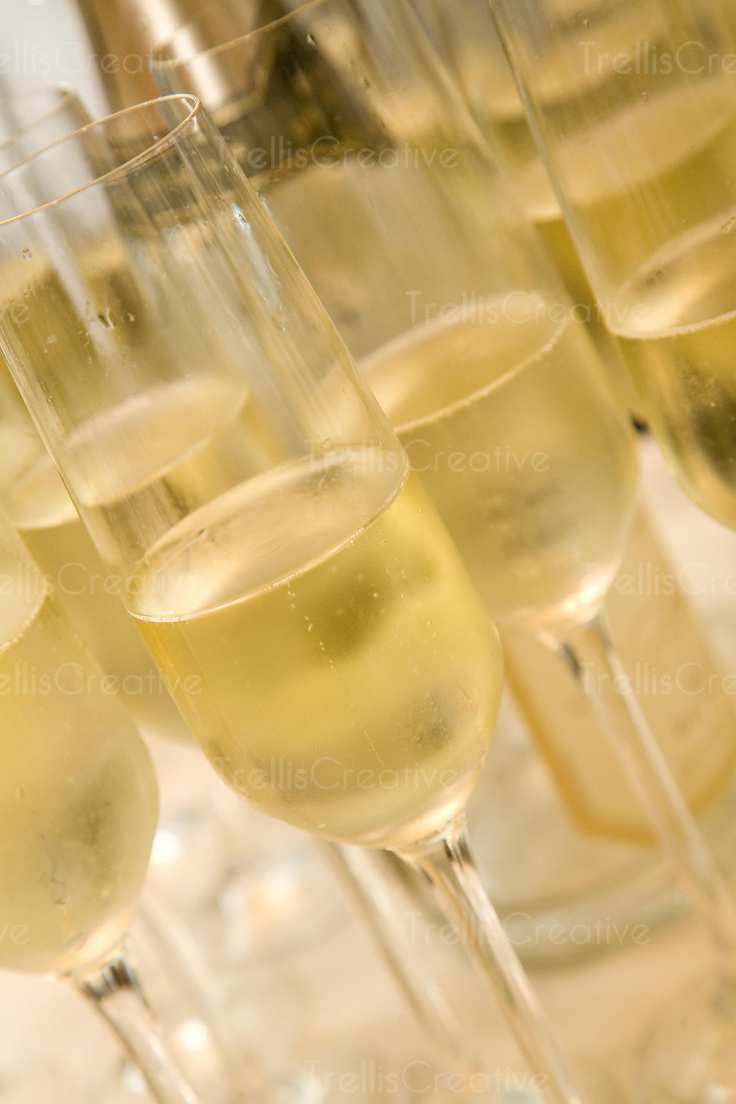 Glasses of chilled sparkling white wine waiting to be served