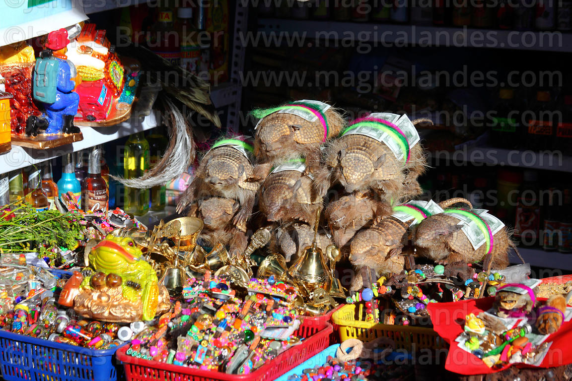 Dead Andean hairy armadillos (Chaetophractus nationi) for sale on stall, Alasitas festival, Puno, Peru