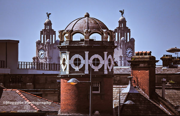 Liverpool Roof Tops