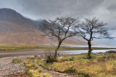 Head of Loch Etive and Ben Starav