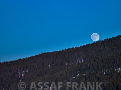 Moon roling down the mountain, France Jura