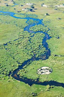Aerial view of the Okavango delta with channels, lagoons, swamps and islands, Botswana, Africa ;Aerial view of the Okavango d...