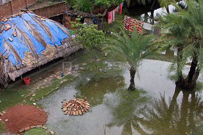 Aerial view of waterlogged garden, waterlogging caused by river siltation in the Ganges delta, Bangladesh, November 2008
