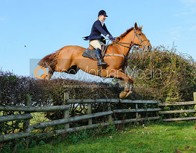 Holly Campbell jumping a hedge - The Fernie Hunt at Knights Farm 10/11
