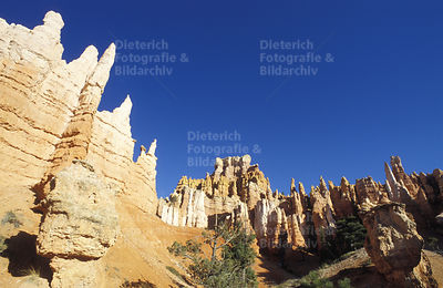 Felsformationen, Bryce Canyon National Park, Utah