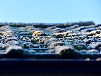 Frost on the roof.