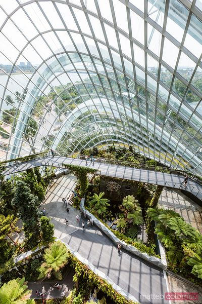 Elevated view inside Cloud forest, Gardens by the Bay, Singapore