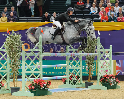Anne Bedford and Cassio III - The Horse and Hound Foxhunter, Horse of the Year Show 2010