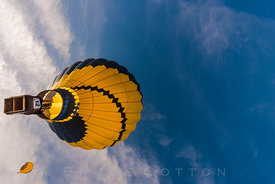 Yellow Jacket - Hot air balloon festival