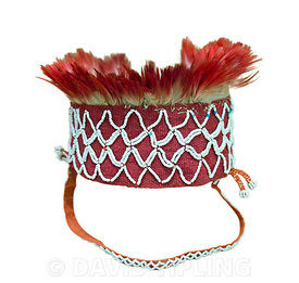Headdress worn by men from the Pilaga tribe in Argentina.  Only those who had killed could wear red feathers.