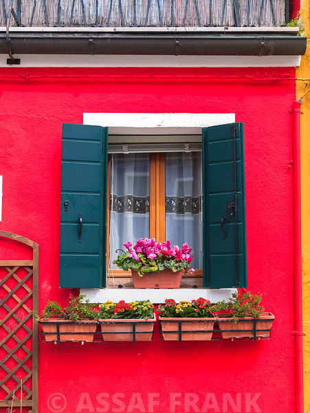 Colourful window with flowers, Burano, Italy