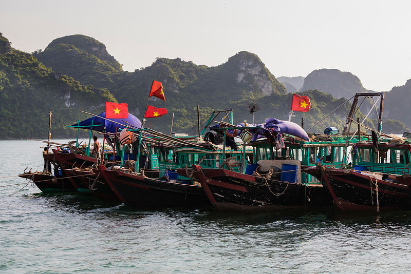 Anchored Fishing Boats in Halong Bay