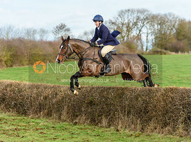 Emilie Chandler Jumping a hedge at Sheepwash. The Belvoir Hunt at Sheepwash 29/12