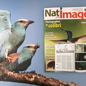 Publication dans Nat'Images  photos